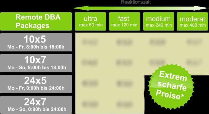 Oracle Remote DBA Preise