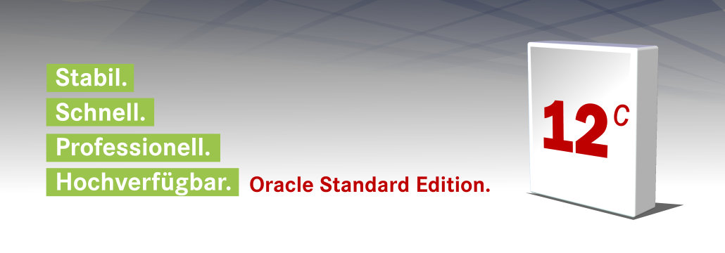 12c Oracle Standard Edition Datenbank Software