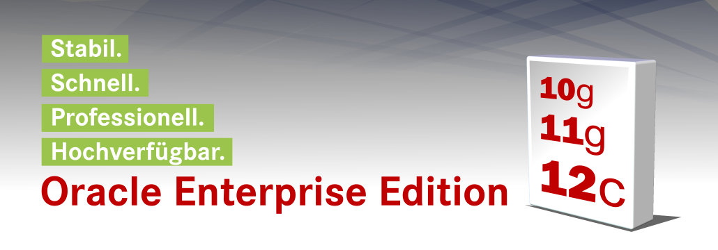 Oracle Enterprise Edition Überblick