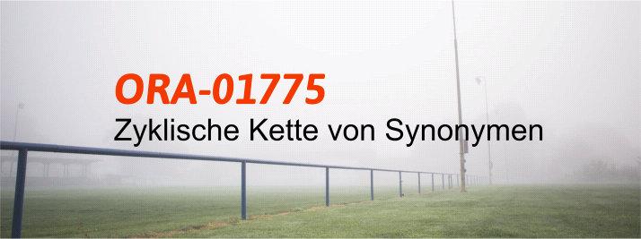ORA-01775 zyklische Ketten von Synonymen