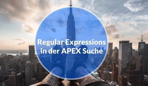 Regular Expression in APEX Suche