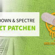Meltdown und Spectre jetzt patchen
